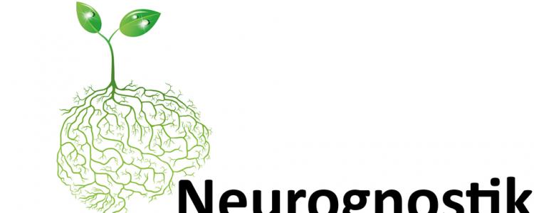 Nou Servei de Neuropsicología